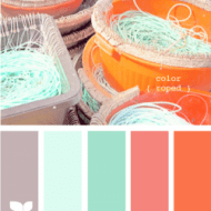 Coral and Aqua Nursery Inspiration