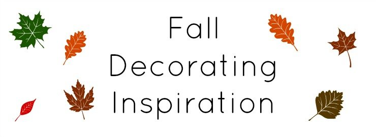 fall feature