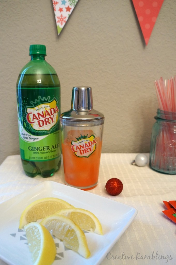 Shake up the Season with Canada Dry