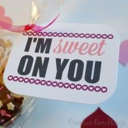 I'm sweet on you printable valentine tag