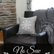No Sew Winter Pillow