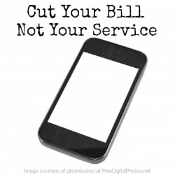 Cut your cell phone bill, not your service