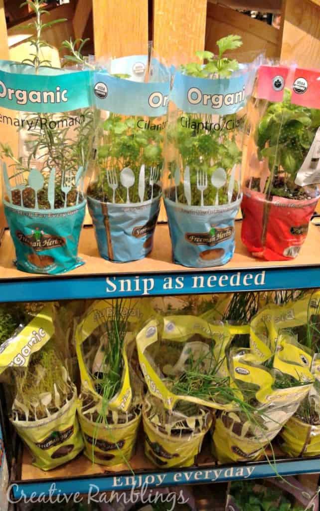 fresh cilantro #MyPicknSave #ad