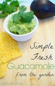 Garden fresh guacamole