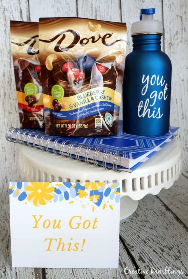 Silhouette water bottle and sweet reward gift basket #LoveDoveFruits AD