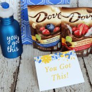 Silhouette Water Bottle And Sweet Reward Gift Basket