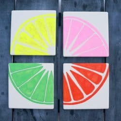 Graphic Fruit Painted Coasters