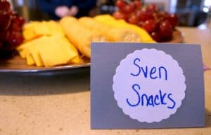 A Frozen Party for Sisters. Sven Snacks