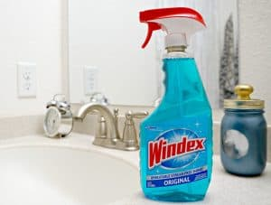 Prep your home for Thanksgiving with Windex