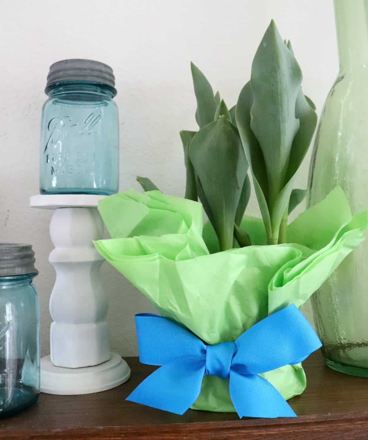 Dollar Store Plant Wrapping Idea