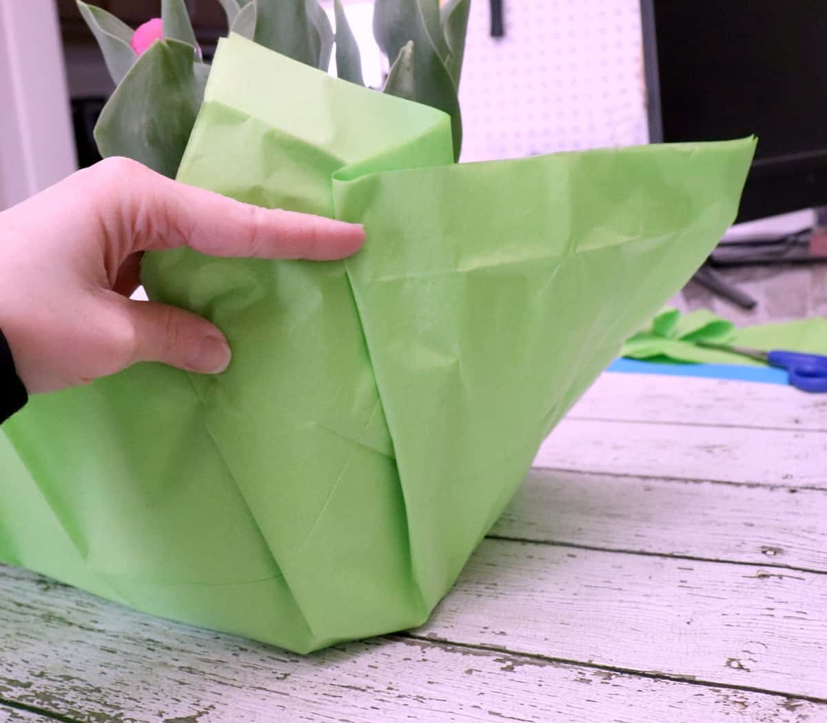 dollar store plant wrapping idea with tissue paper