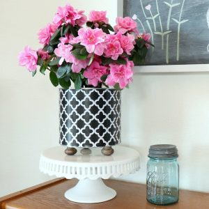 How to Make a Coffee Can Planter