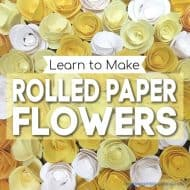 Rolled Paper Flower Shadow Box
