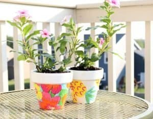 Mod-Podge-terracotta-pots-with-plants