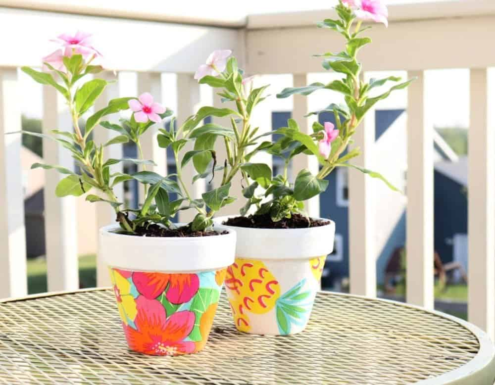Mod-Podge-terracotta-pots-with-plants