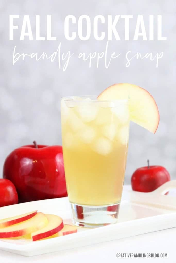 fall cocktail brandy apple snap recipe