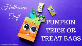 Pumpkin Trick or Treat Bags - Halloween Craft