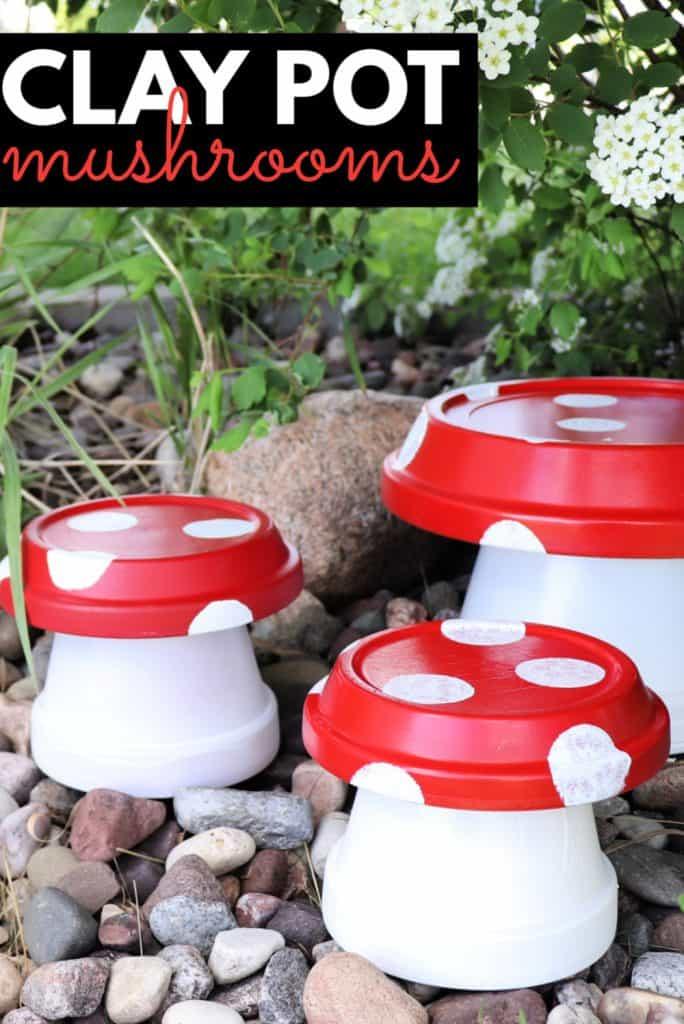 clay pot mushrooms