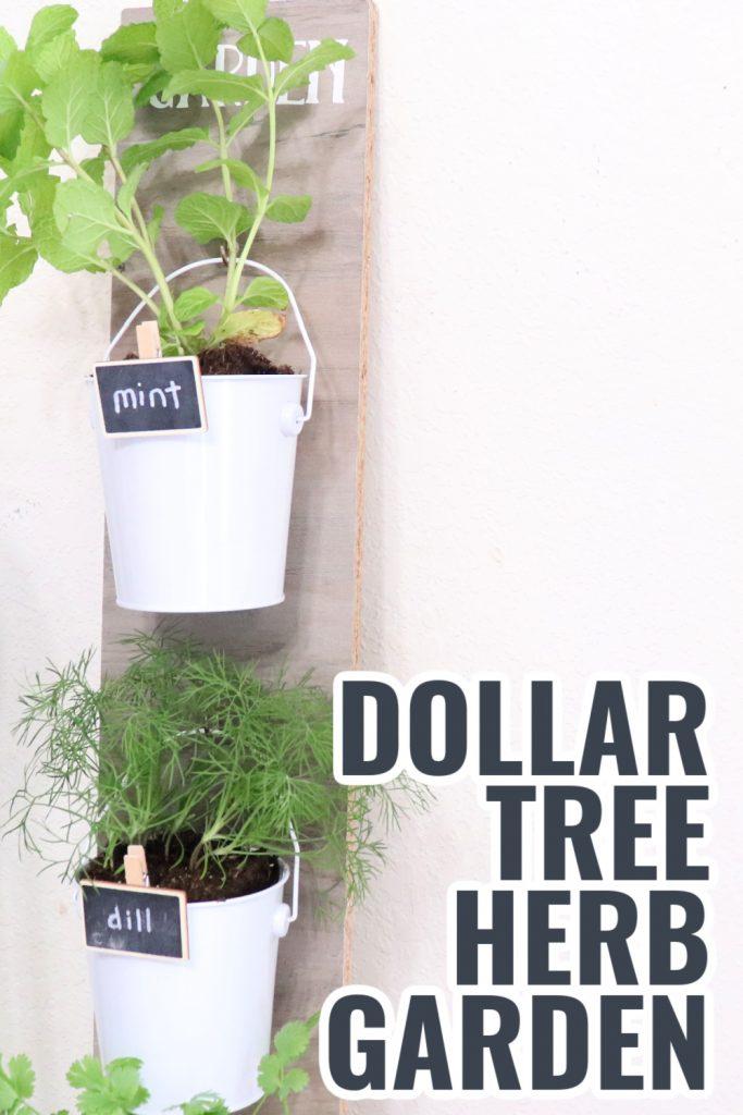 Dollar Tree herb garden DIY