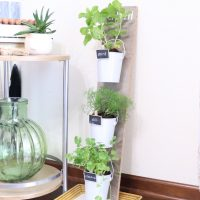 Dollar Tree herb planter inside