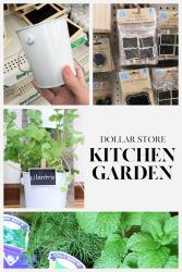 Dollar store kitchen garden collage